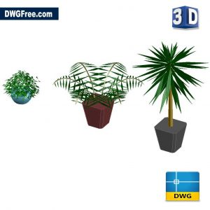 3D Indoor Plant DWG in CAD