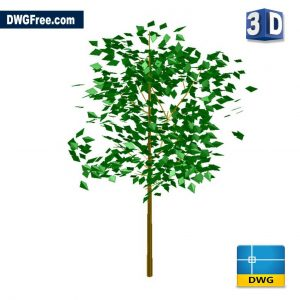 3D Tree DWG in CAD