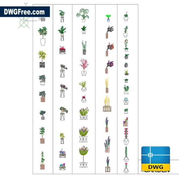 Plants for interior decoration dwg drawing