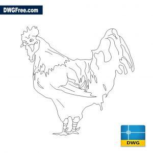 Chicken Elevation