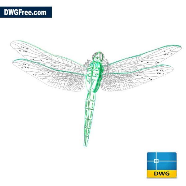Dragonfly CAD Model DWG Drawing