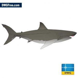 Shark DWG in AutoCAD